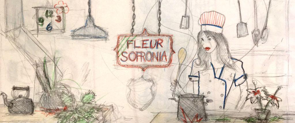 fleursofronia sketch